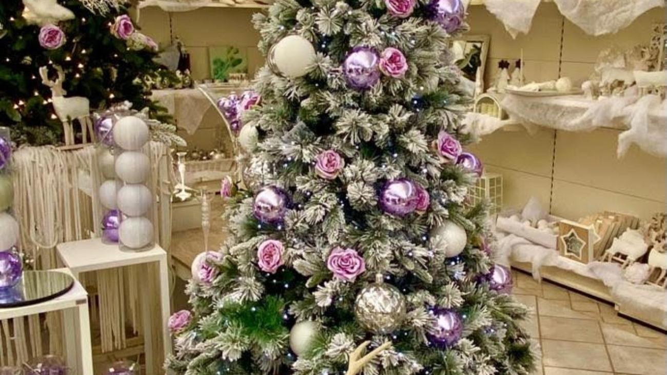 albero_lilla